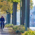 Knackpunkt in der Planung für den Radschnellweg war die Gladbecker Straße in Bottrop. Gegen ihren Ausbau...</p>       <div class=